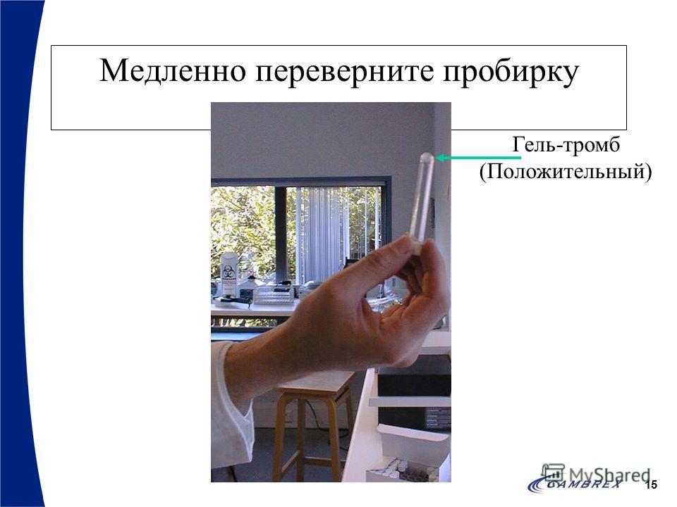 15 Медленно переверните пробирку Гель-тромб (Положительный)