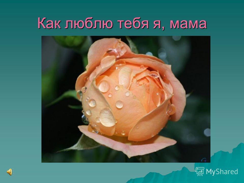 Как люблю тебя я, мама
