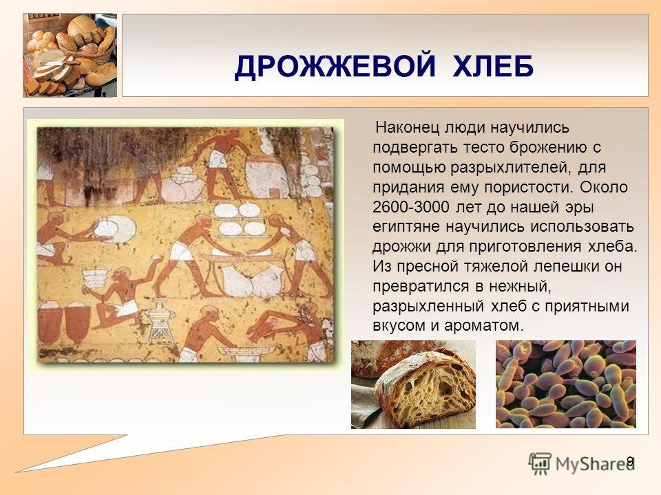 ДРОЖЖЕВОЙ ХЛЕБ Наконец люди научились подвергать тесто брожению с помощью разрыхлителей, для придания ему пористости. Около 2600-3000 лет до нашей эры египтяне научились использовать дрожжи для приготовления хлеба. Из пресной тяжелой лепешки он превр