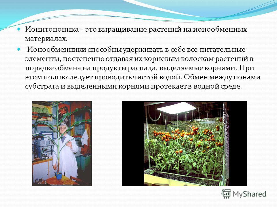 Ионитопоника – это выращивание растений на ионообменных материалах. Ионообменники способны удерживать в себе все питательные элементы, постепенно отдавая их корневым волоскам растений в порядке обмена на продукты распада, выделяемые корнями. При этом