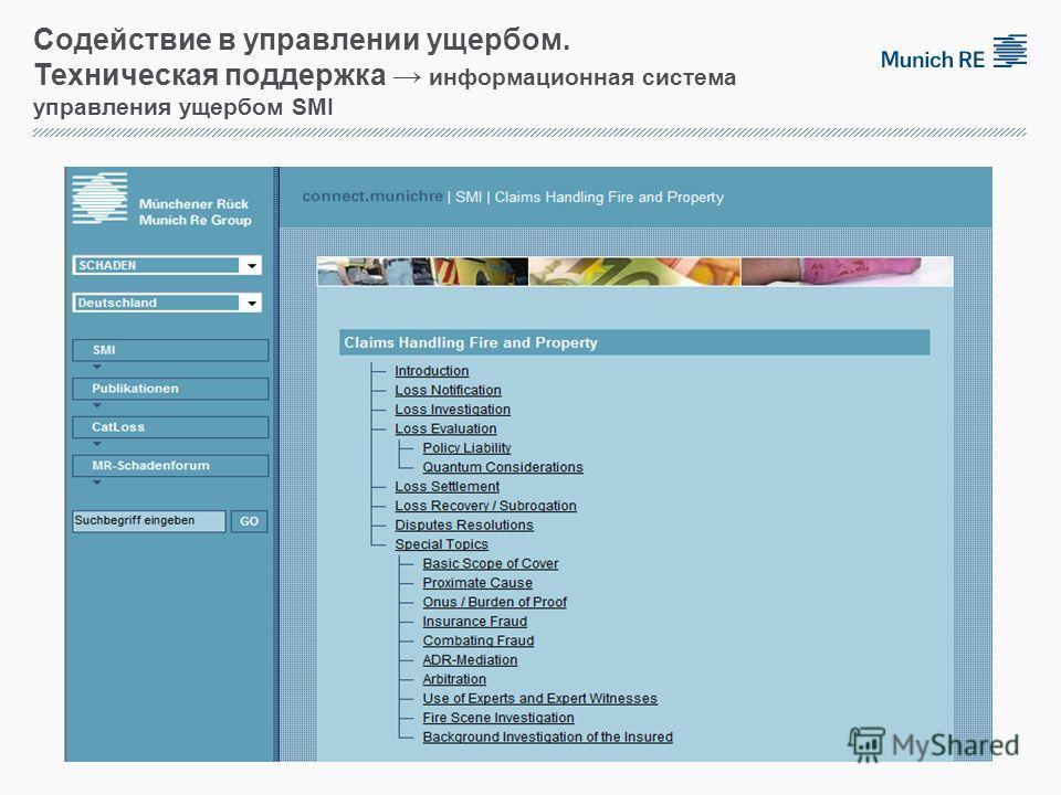 Содействие в управлении ущербом. Техническая поддержка информационная система управления ущербом SMI