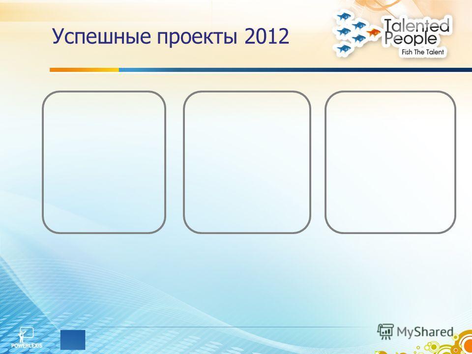 Успешные проекты 2012