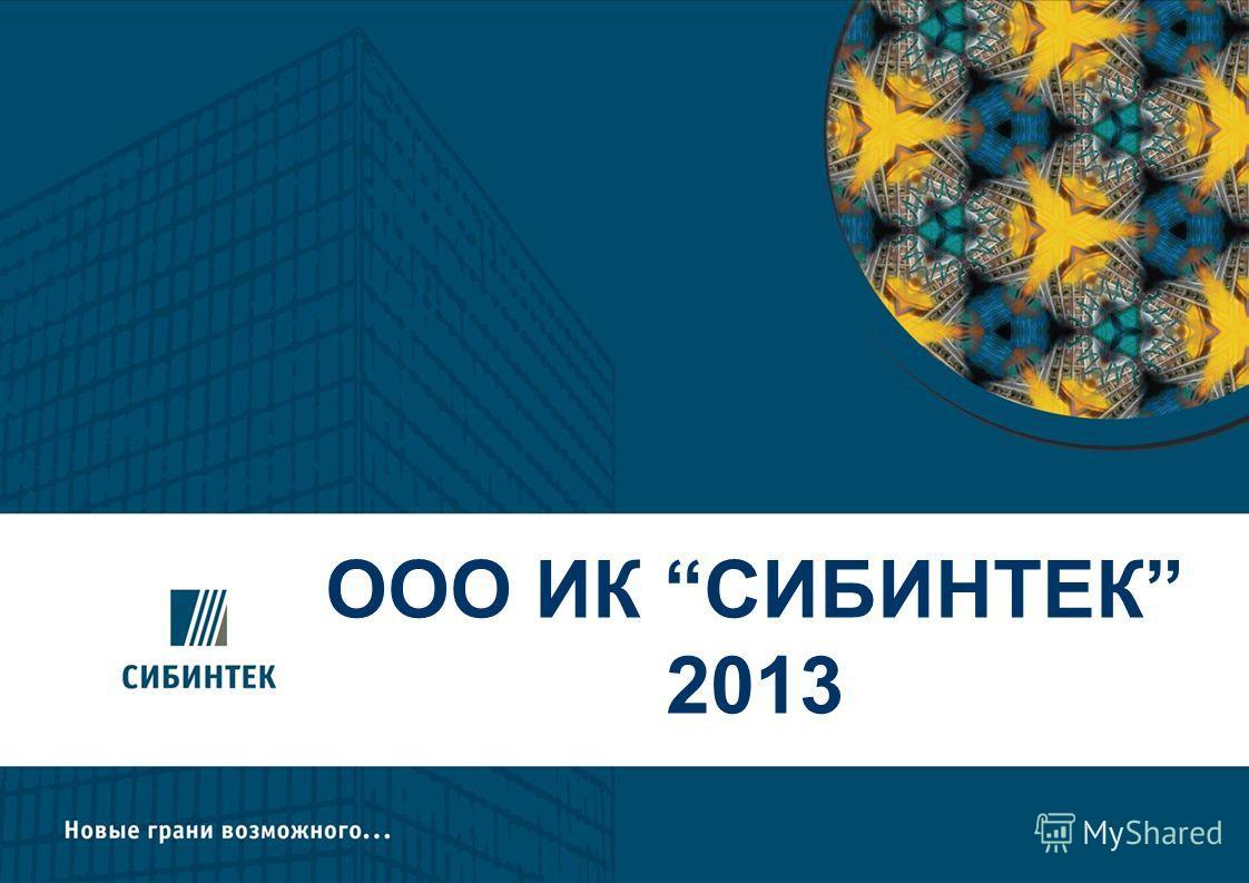 ООО ИК СИБИНТЕК 2013 2008