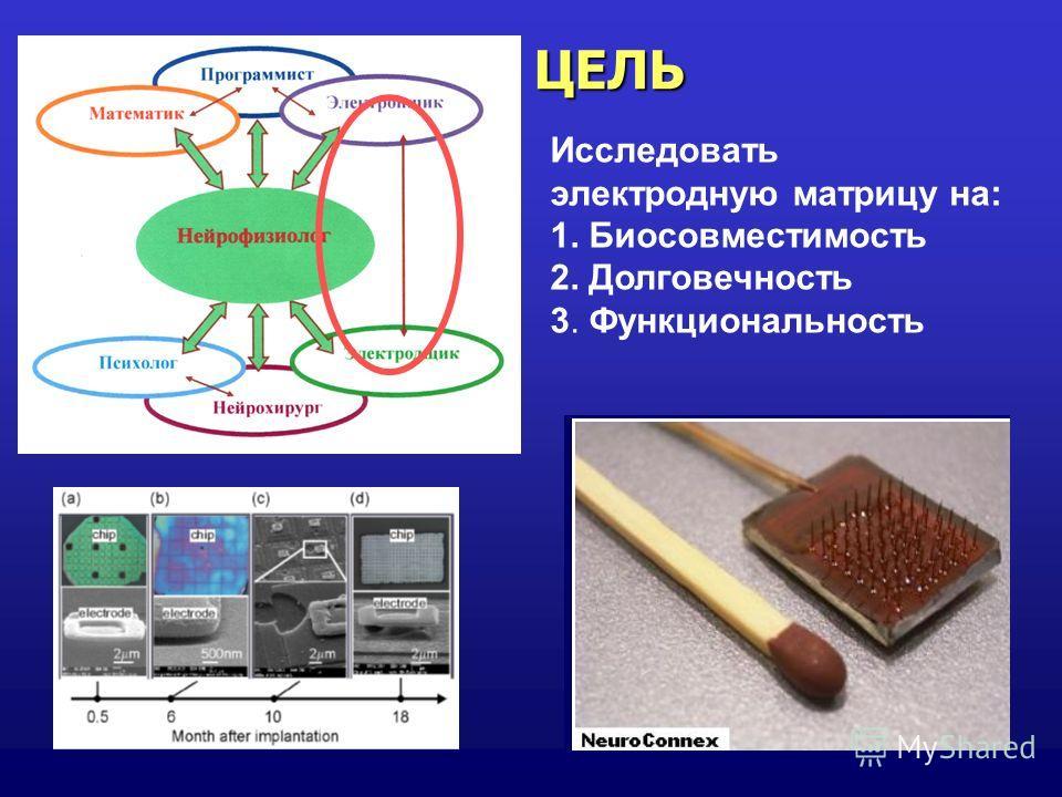 ЦЕЛЬ Исследовать электродную матрицу на: 1. Биосовместимость 2. Долговечность 3. Функциональность