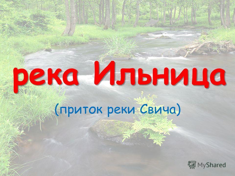 река Ильница (приток реки Свича)