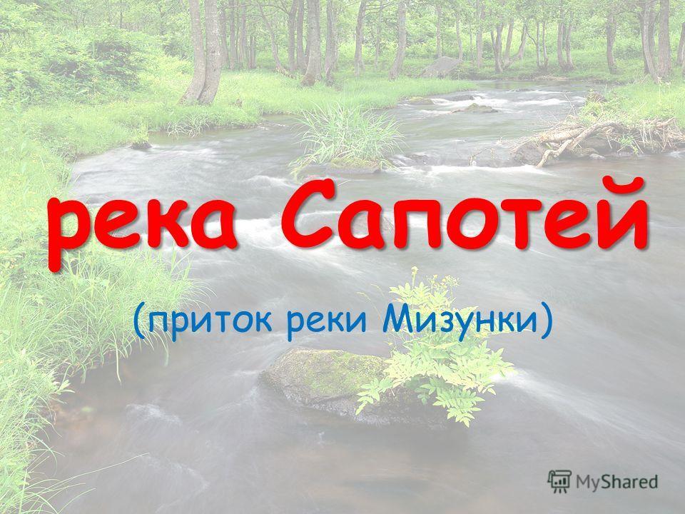 река Сапотей (приток реки Мизунки)