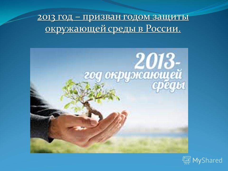 2013 год – призван годом защиты окружающей среды в России.