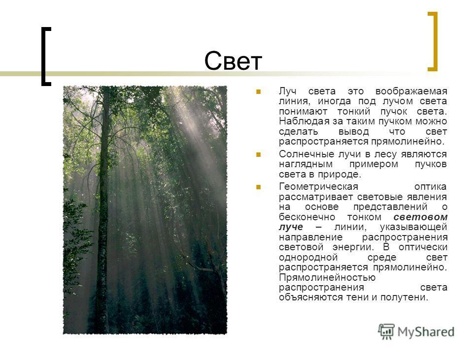 Свет Луч света это воображаемая линия, иногда под лучом света понимают тонкий пучок света. Наблюдая за таким пучком можно сделать вывод что свет распространяется прямолинейно. Солнечные лучи в лесу являются наглядным примером пучков света в природе.