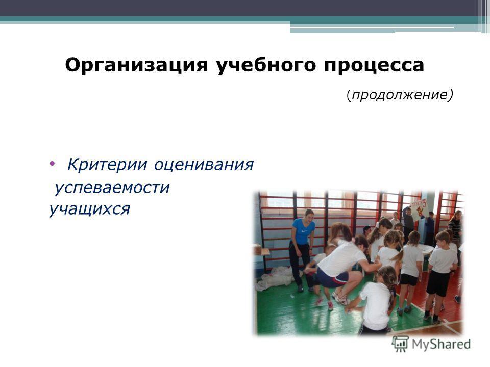 Презентация на тему БОУ ОО СПО Омский колледж профессиональных  12 Организация учебного процесса продолжение Критерии оценивания успеваемости учащихся