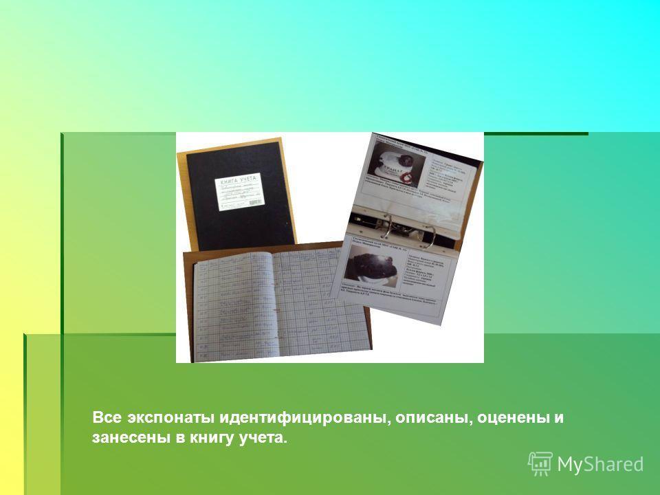 Все экспонаты идентифицированы, описаны, оценены и занесены в книгу учета.