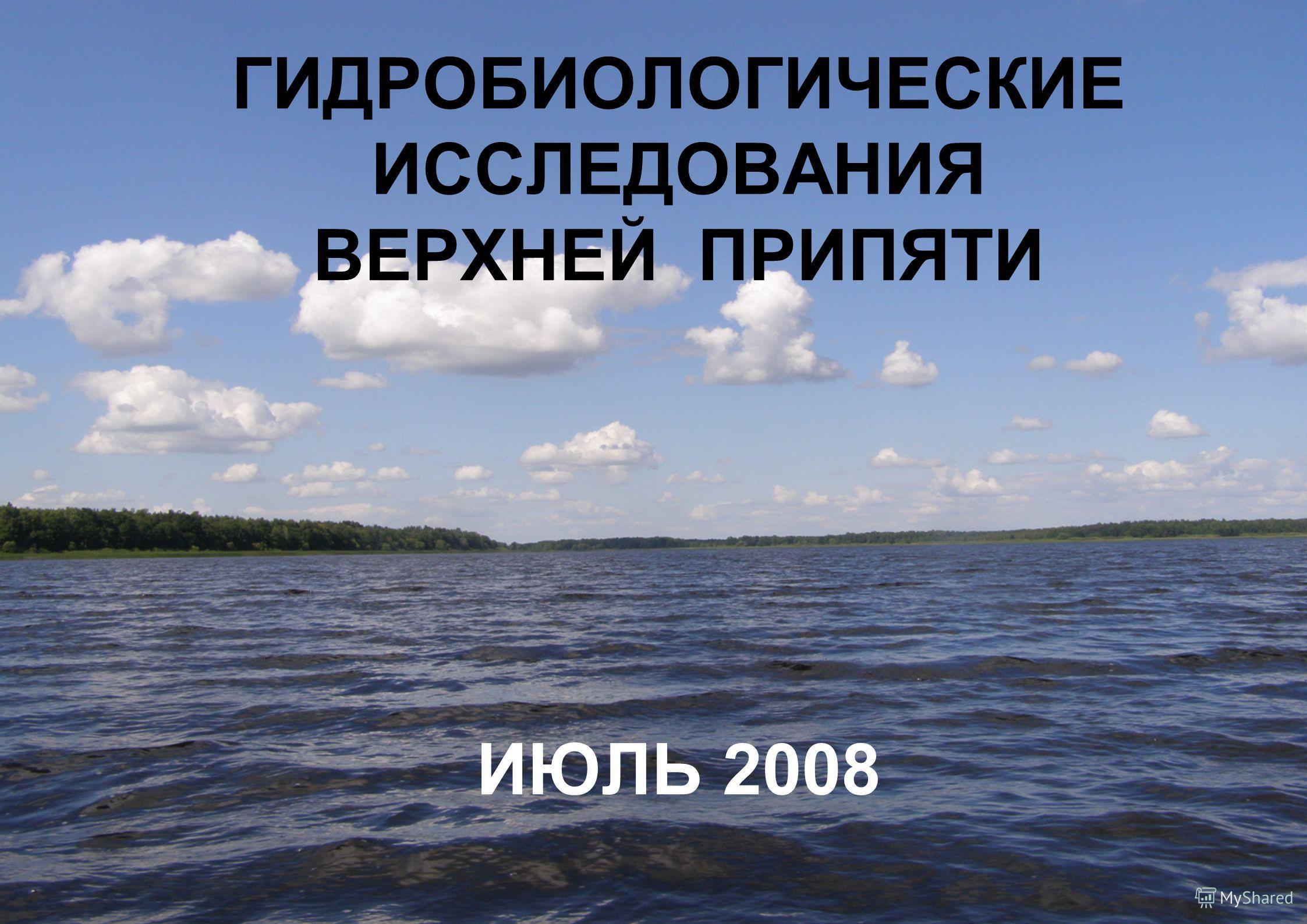 ГИДРОБИОЛОГИЧЕСКИЕ ИССЛЕДОВАНИЯ ВЕРХНЕЙ ПРИПЯТИ ИЮЛЬ 2008