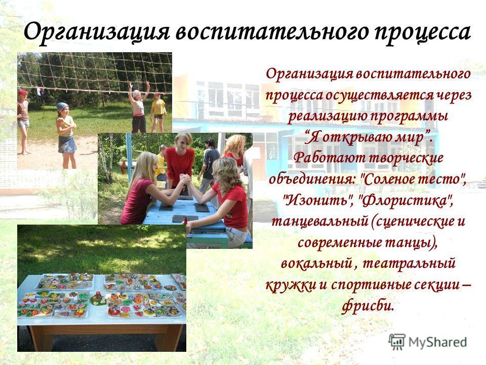 Организация воспитательного процесса осуществляется через реализацию программыЯ открываю мир. Работают творческие объединения: