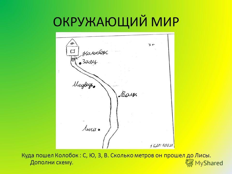 ОКРУЖАЮЩИЙ МИР Куда пошел Колобок : С, Ю, З, В. Сколько метров он прошел до Лисы. Дополни схему.