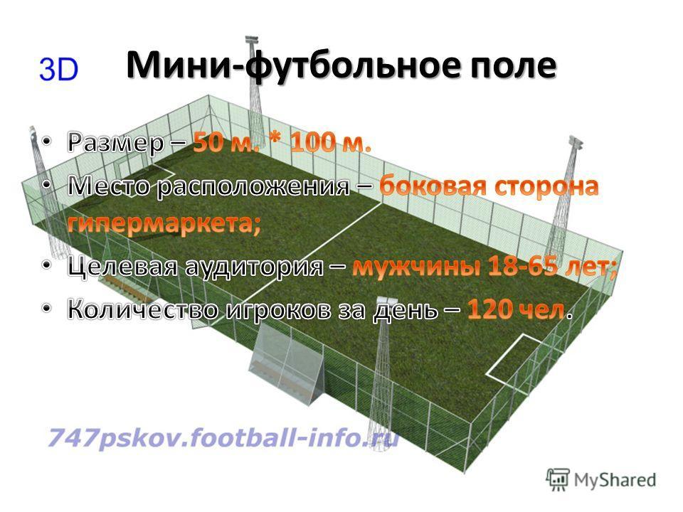 Мини-футбольное поле