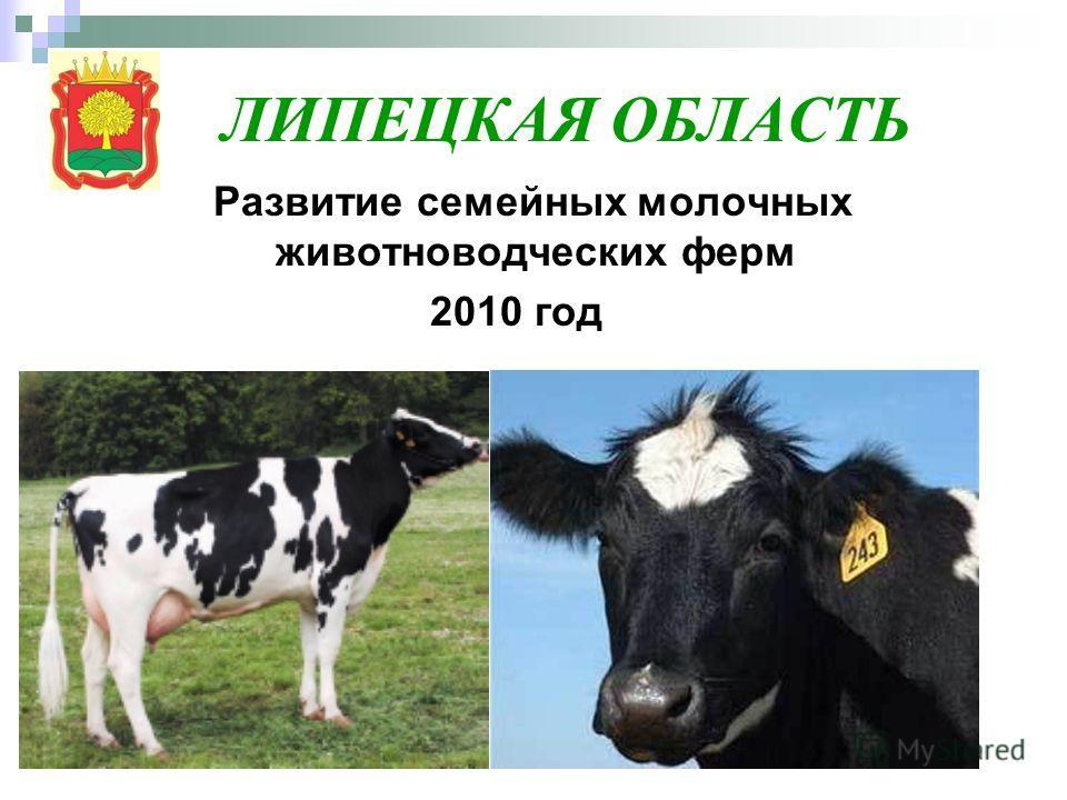 ЛИПЕЦКАЯ ОБЛАСТЬ Развитие семейных молочных животноводческих ферм 2010 год