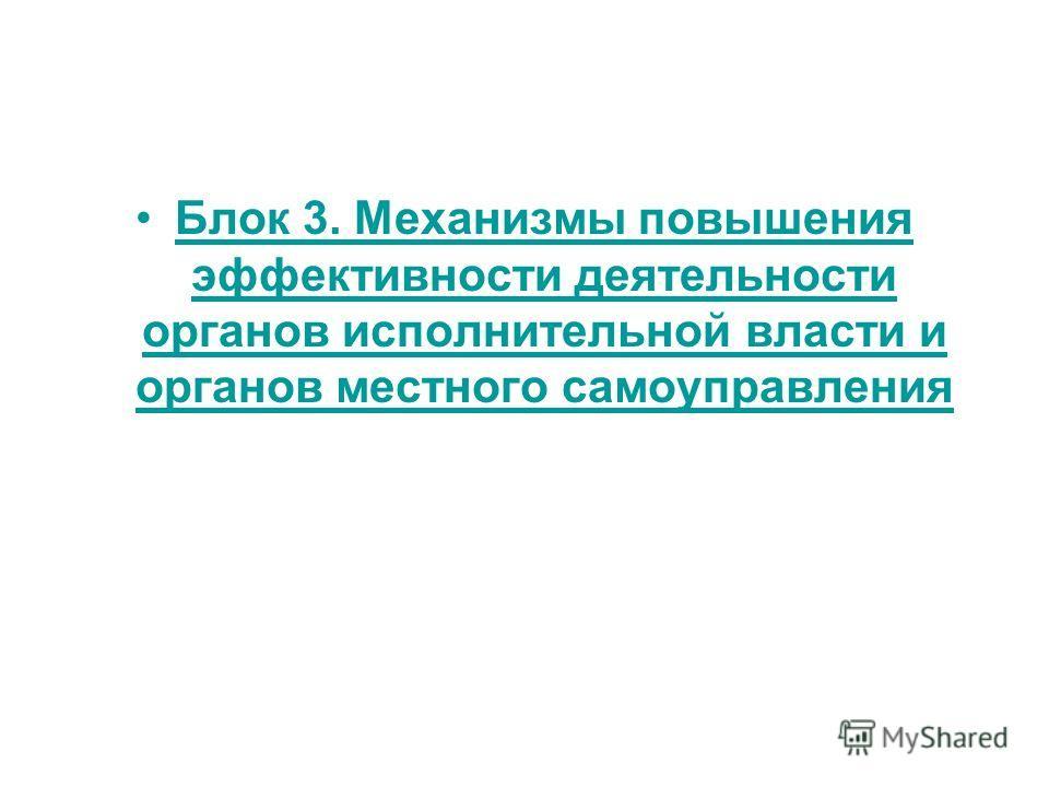 Блок 3. Механизмы повышения эффективности деятельности органов исполнительной власти и органов местного самоуправления