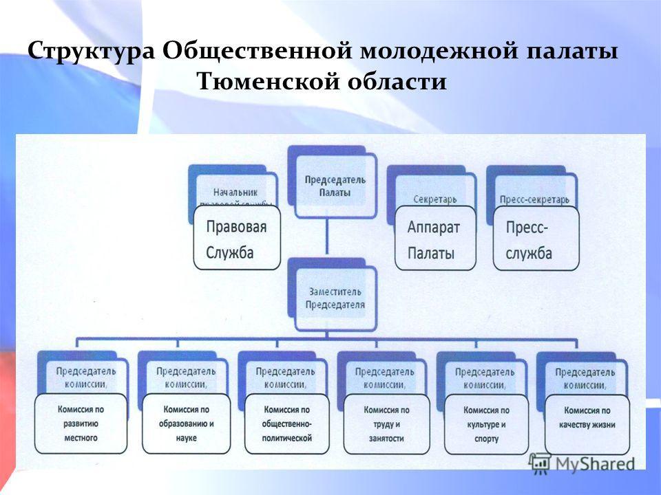 Структура Общественной молодежной палаты Тюменской области