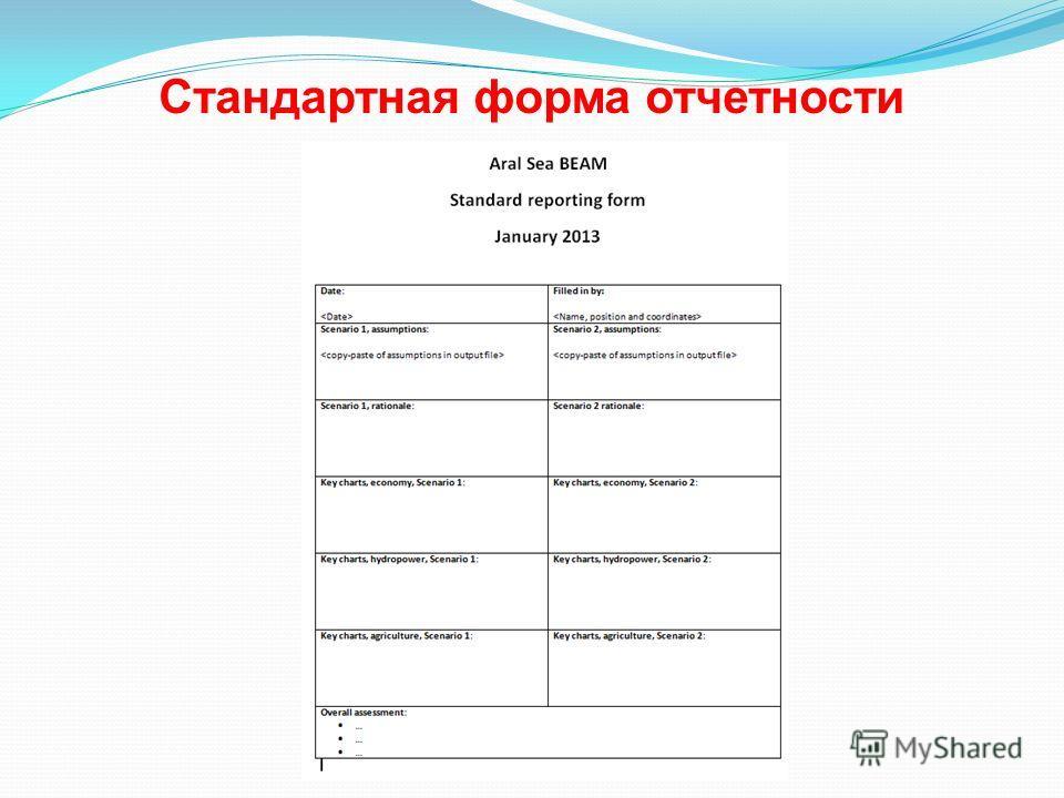 Стандартная форма отчетности