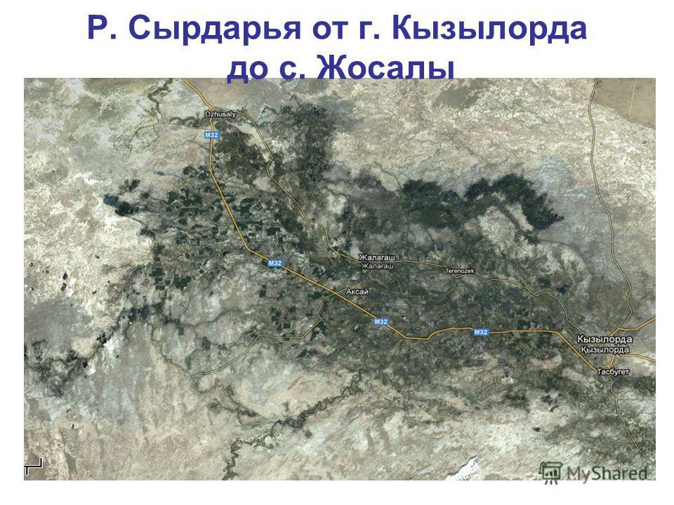 Р. Сырдарья от г. Кызылорда до с. Жосалы