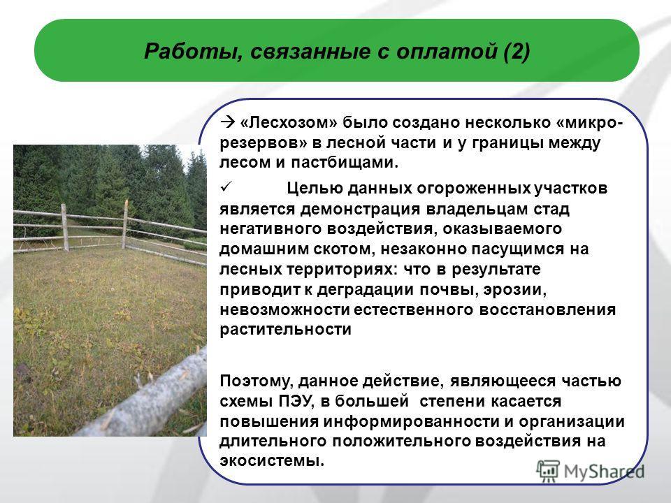 8 Работы, связанные с оплатой (2) «Лесхозом» было создано несколько «микро- резервов» в лесной части и у границы между лесом и пастбищами. Целью данных огороженных участков является демонстрация владельцам стад негативного воздействия, оказываемого д