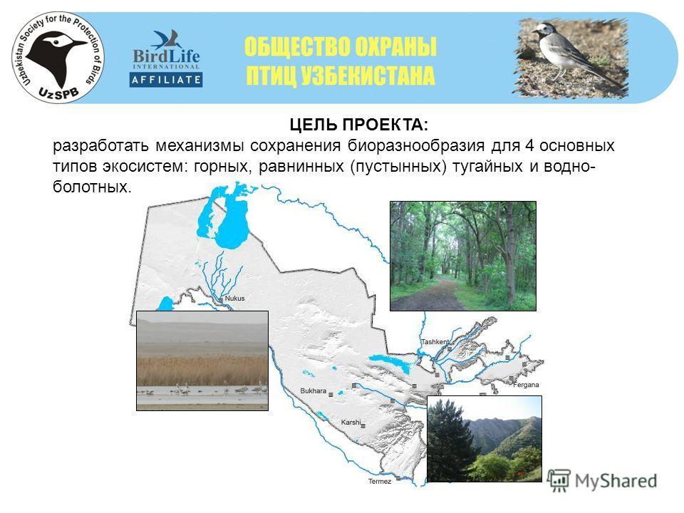 ЦЕЛЬ ПРОЕКТА: разработать механизмы сохранения биоразнообразия для 4 основных типов экосистем: горных, равнинных (пустынных) тугайных и водно- болотных.