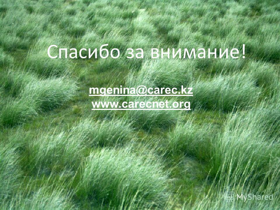 Спасибо за внимание! mgenina@carec.kz www.carecnet.org