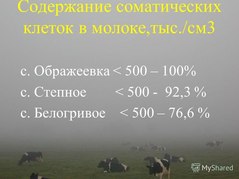 Содержание соматических клеток в молоке,тыс./см3 с. Ображеевка < 500 – 100% с. Степное < 500 - 92,3 % с. Белогривое < 500 – 76,6 %