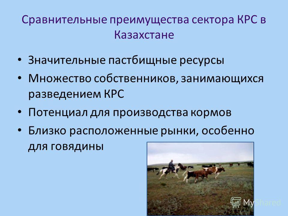 Сравнительные преимущества сектора КРС в Казахстане Значительные пастбищные ресурсы Множество собственников, занимающихся разведением КРС Потенциал для производства кормов Близко расположенные рынки, особенно для говядины