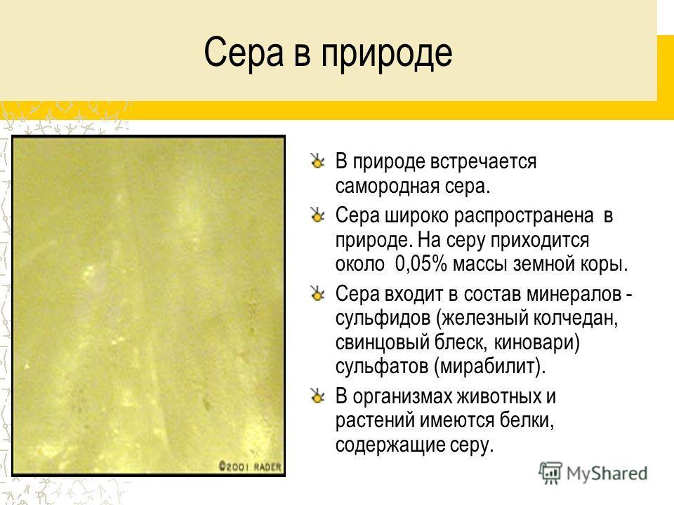 Сера в природе В природе встречается самородная сера. Сера широко распространена в природе. На серу приходится около 0,05% массы земной коры. Сера входит в состав минералов - сульфидов (железный колчедан, свинцовый блеск, киновари) сульфатов (мирабил