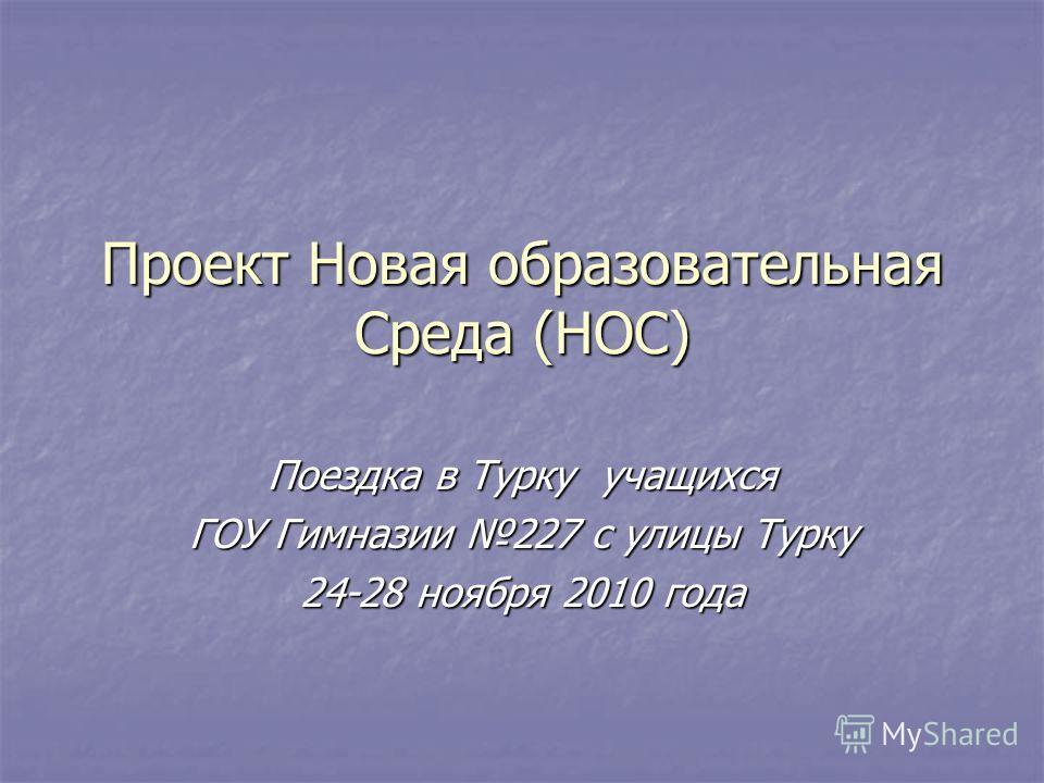 Проект Новая образовательная Среда (НОС) Поездка в Турку учащихся ГОУ Гимназии 227 с улицы Турку 24-28 ноября 2010 года