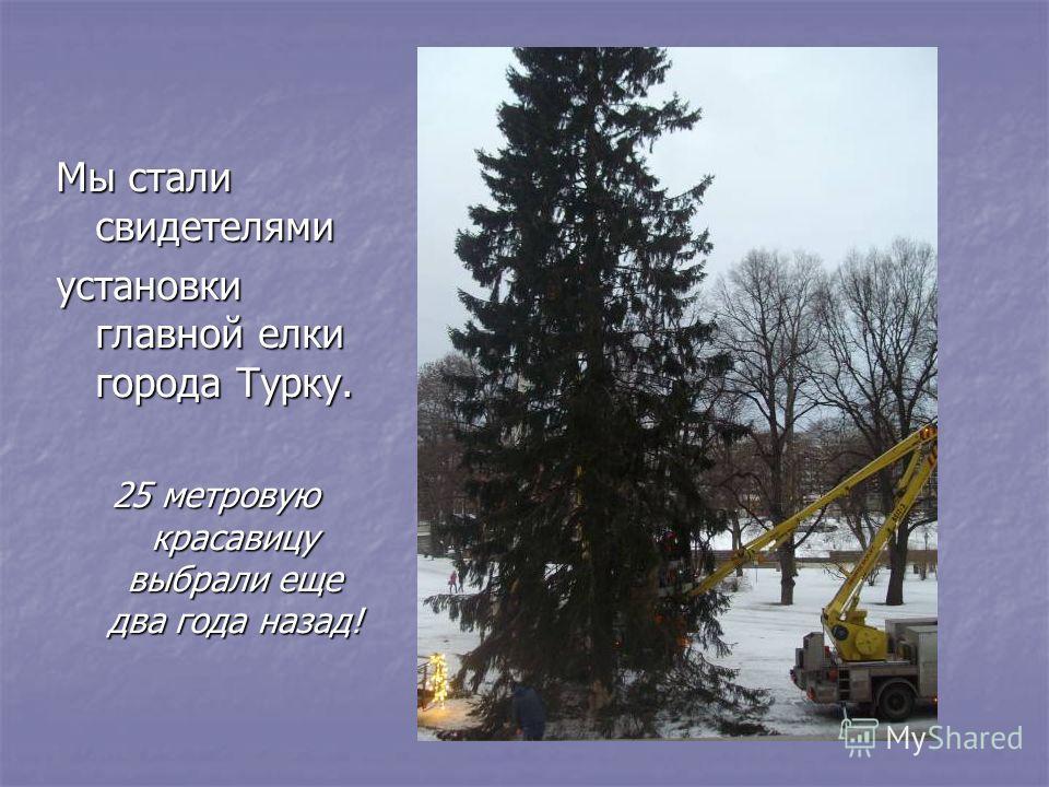 Мы стали свидетелями установки главной елки города Турку. 25 метровую красавицу выбрали еще два года назад!