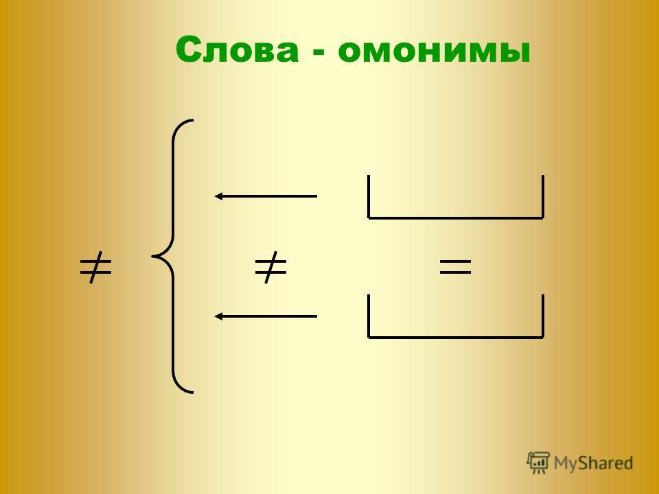 Слова - омонимы