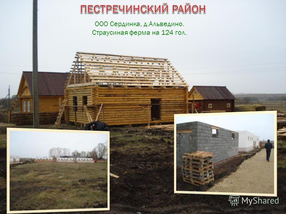 ООО Сердинка, д.Альведино. Страусиная ферма на 124 гол.