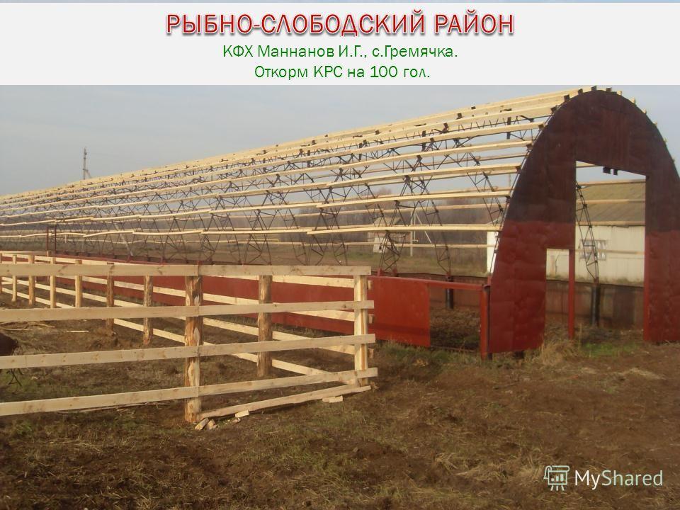 КФХ Маннанов И.Г., с.Гремячка. Откорм КРС на 100 гол.