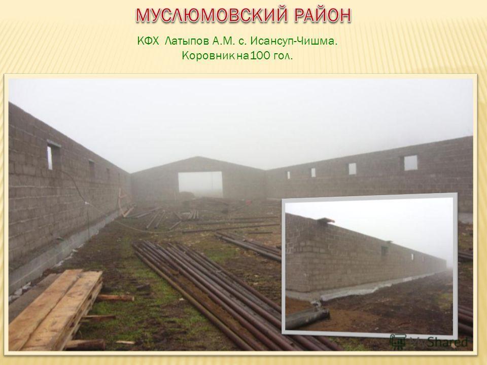 КФХ Латыпов А.М. с. Исансуп-Чишма. Коровник на100 гол.