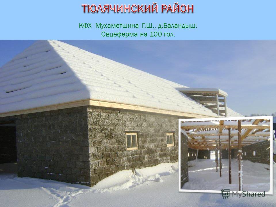 КФХ Мухаметшина Г.Ш., д.Баландыш. Овцеферма на 100 гол.