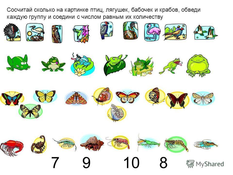 Сосчитай сколько на картинке птиц, лягушек, бабочек и крабов, обведи каждую группу и соедини с числом равным их количеству 79108