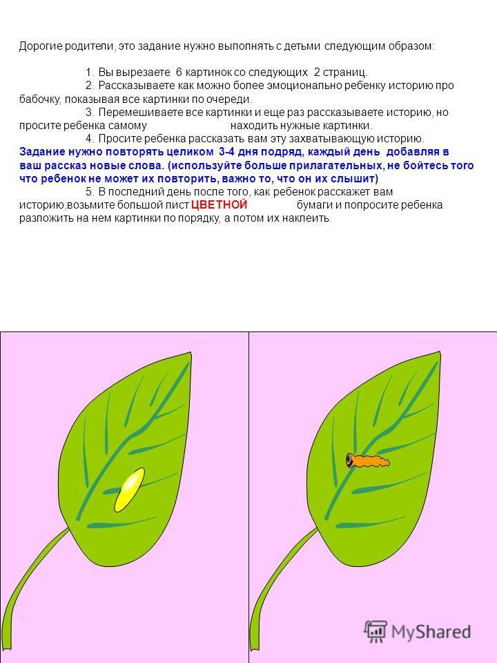 Дорогие родители, это задание нужно выполнять с детьми следующим образом: 1. Вы вырезаете 6 картинок со следующих 2 страниц. 2. Рассказываете как можно более эмоционально ребенку историю про бабочку, показывая все картинки по очереди. 3. Перемешивает