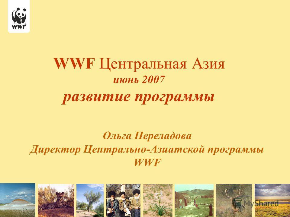 WWF Центральная Азия июнь 2007 развитие программы Ольга Переладова Директор Центрально-Азиатской программы WWF