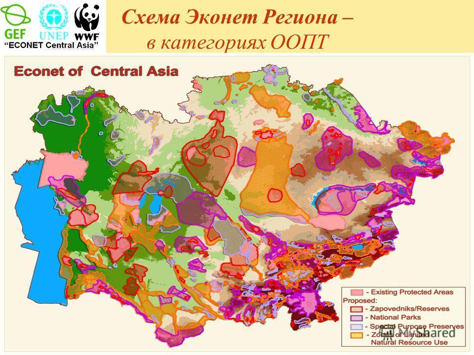 Схема Эконет Региона – в категориях ООПТ