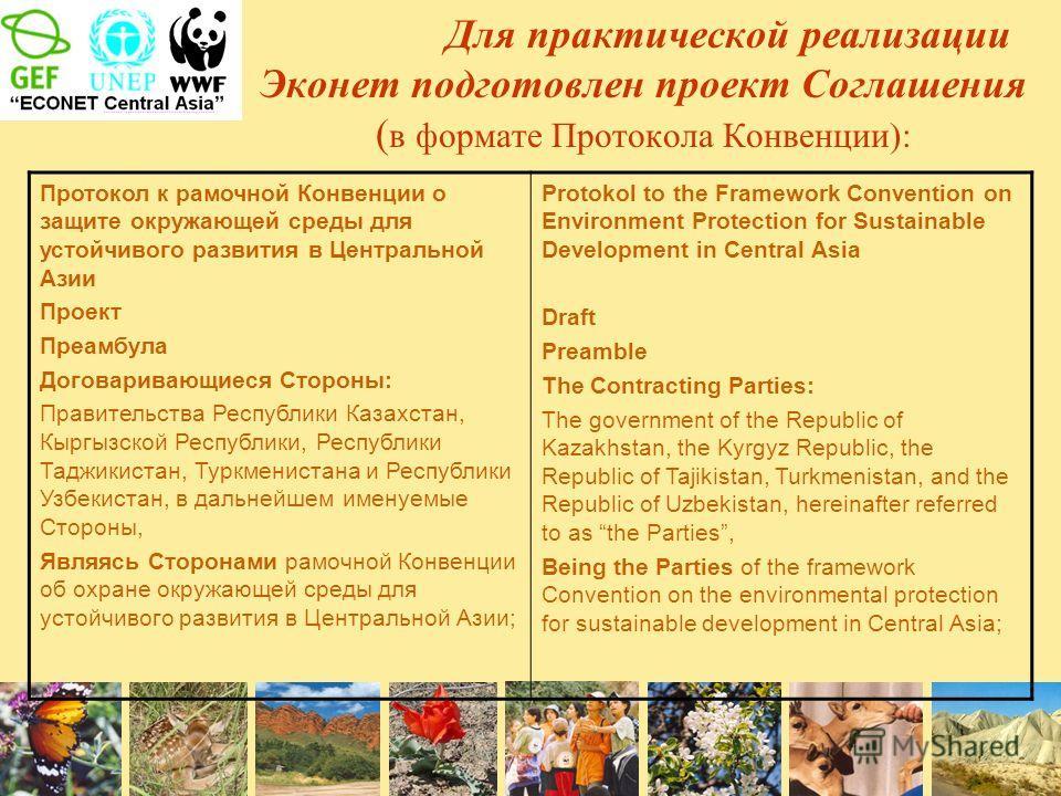 Для практической реализации Эконет подготовлен проект Соглашения ( в формате Протокола Конвенции): Протокол к рамочной Конвенции о защите окружающей среды для устойчивого развития в Центральной Азии Проект Преамбула Договаривающиеся Стороны: Правител