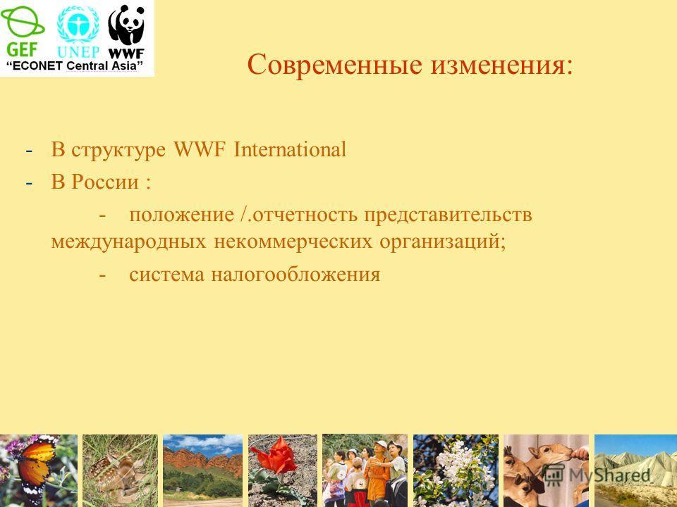 Современные изменения: -В структуре WWF International -В России : - положение /.отчетность представительств международных некоммерческих организаций; - система налогообложения