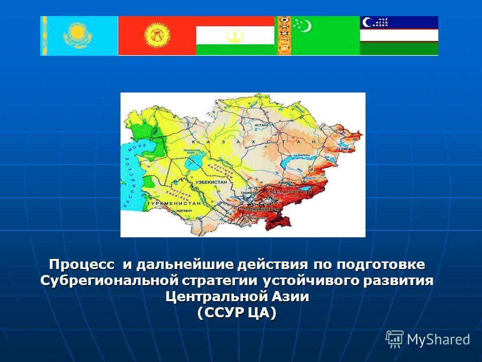 Процесс и дальнейшие действия по подготовке Субрегиональной стратегии устойчивого развития Центральной Азии (ССУР ЦА)