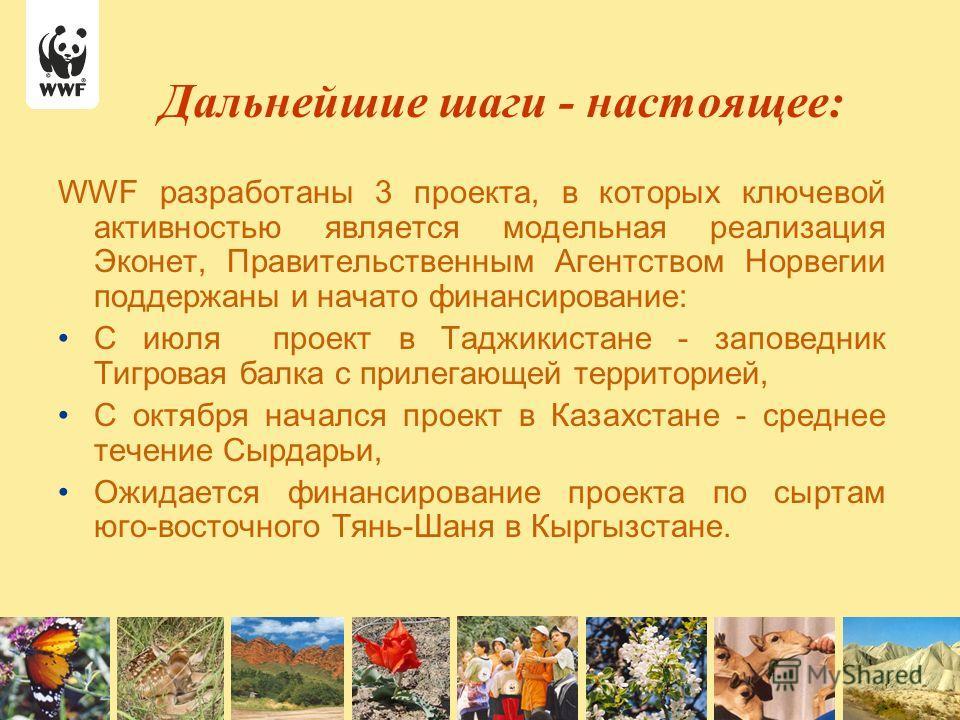 WWF разработаны 3 проекта, в которых ключевой активностью является модельная реализация Эконет, Правительственным Агентством Норвегии поддержаны и начато финансирование: С июля проект в Таджикистане - заповедник Тигровая балка с прилегающей территори