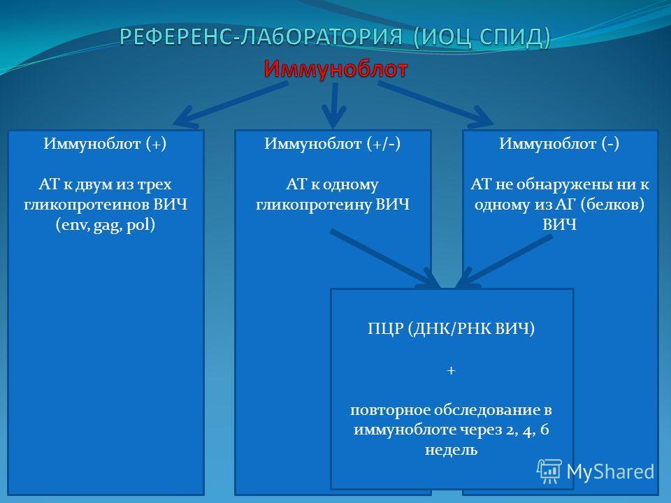 Иммуноблот (+) АТ к двум из трех гликопротеинов ВИЧ (env, gag, pol) + Иммуноблот (-) АТ не обнаружены ни к одному из АГ (белков) ВИЧ Иммуноблот (+/-) АТ к одному гликопротеину ВИЧ ПЦР (ДНК/РНК ВИЧ) + повторное обследование в иммуноблоте через 2, 4, 6