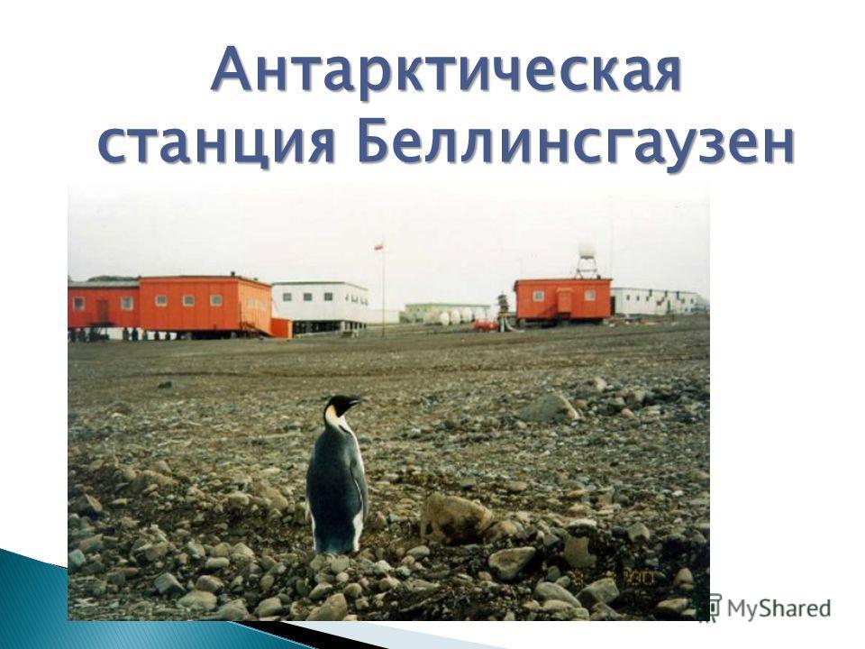 Антарктическая станция Беллинсгаузен Антарктическая станция Беллинсгаузен