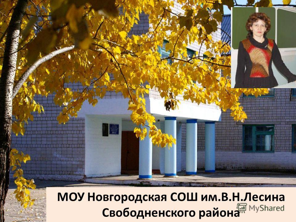 МОУ Новгородская СОШ им.В.Н.Лесина Свободненского района