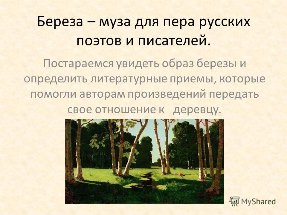 Береза – муза для пера русских поэтов и писателей. Постараемся увидеть образ березы и определить литературные приемы, которые помогли авторам произведений передать свое отношение к деревцу.
