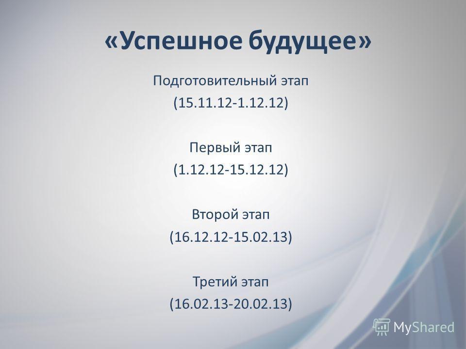 Подготовительный этап (15.11.12-1.12.12) Первый этап (1.12.12-15.12.12) Второй этап (16.12.12-15.02.13) Третий этап (16.02.13-20.02.13) «Успешное будущее»
