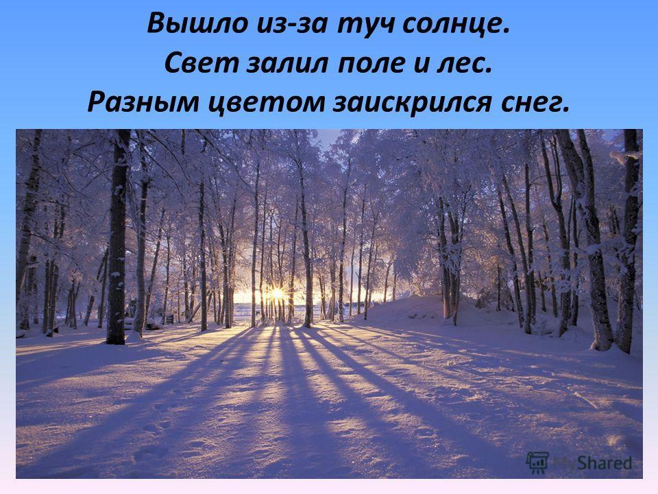 Прочитайте предложения: Вышло из-за туч солнце. Свет залил поле и лес. Разным цветом заискрился снег.